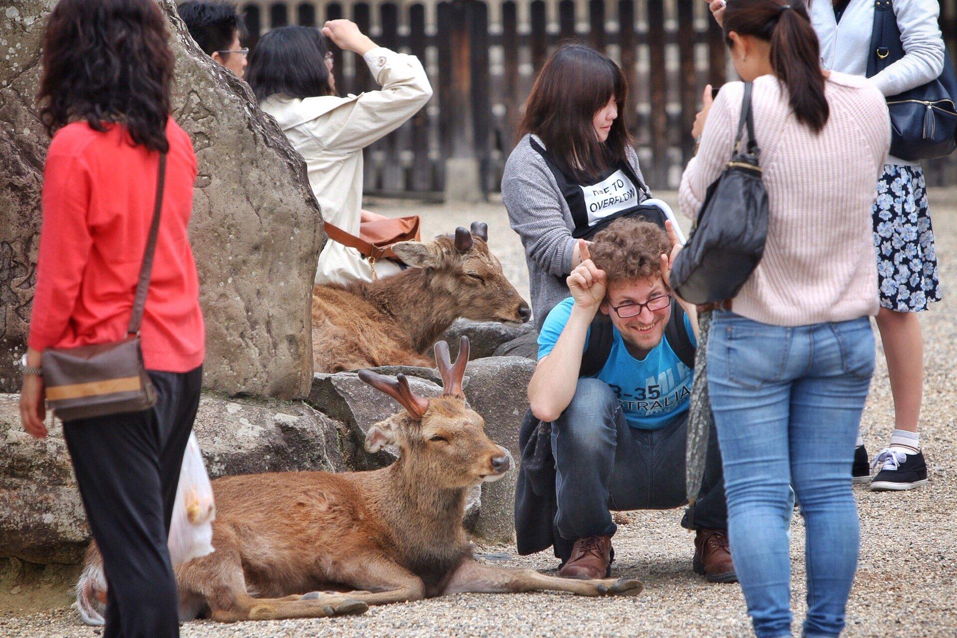 nara-deers-selfie-kasuma-fotografie-blog